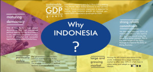 why Investing in Indonesia